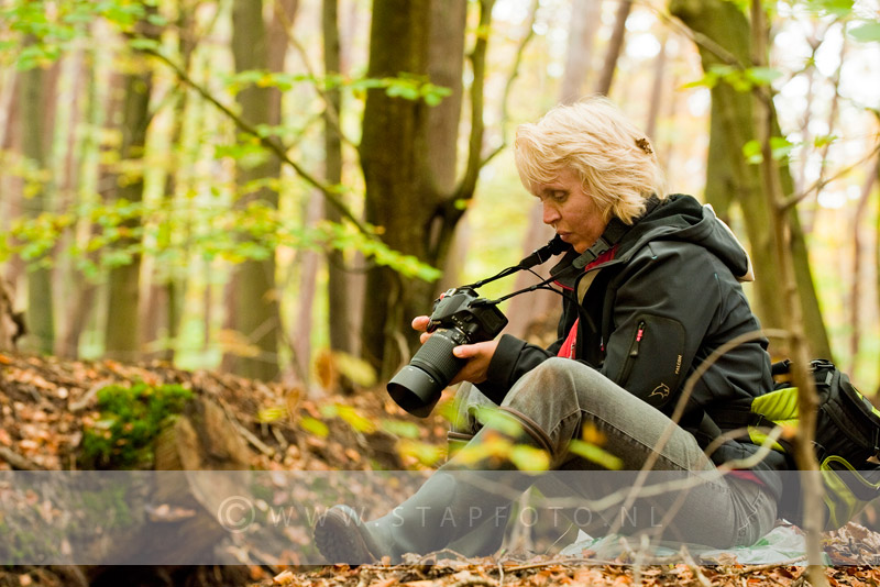 Workshop herfstfotografie, Vaassen